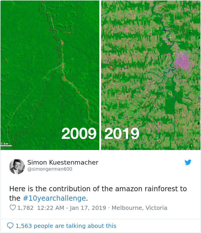 10-Year Challenge Isn't Funny When It Comes To Nature (27 pics)