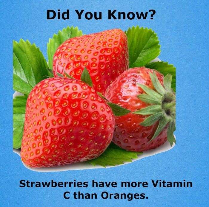 11 Amazing FRUITS Fact!