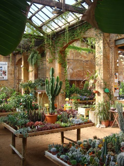 100+ Best Indoor Garden Design Ideas