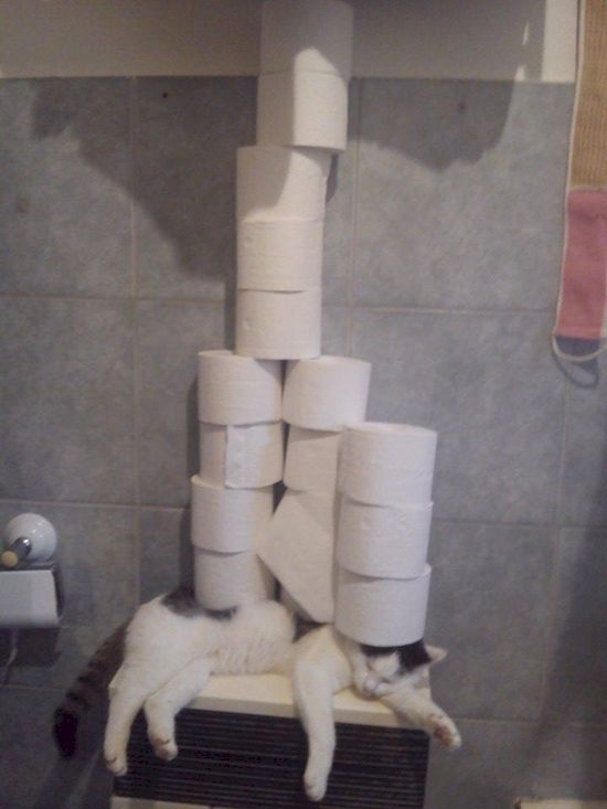 15 People Who Took The Idea Of Following Instructions To An Extreme Level