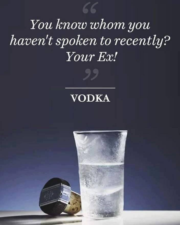 If Alcohol Could Talk (10 Pics)