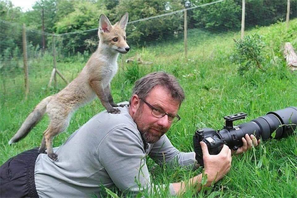 Behind the Lens: Life as a Wildlife Photographer (25 Pics)