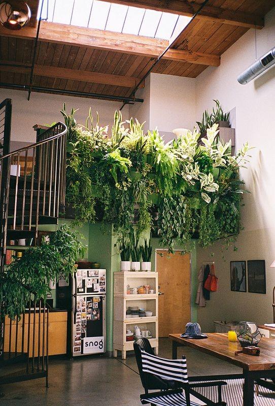 100+ Best Indoor Garden Design Ideas