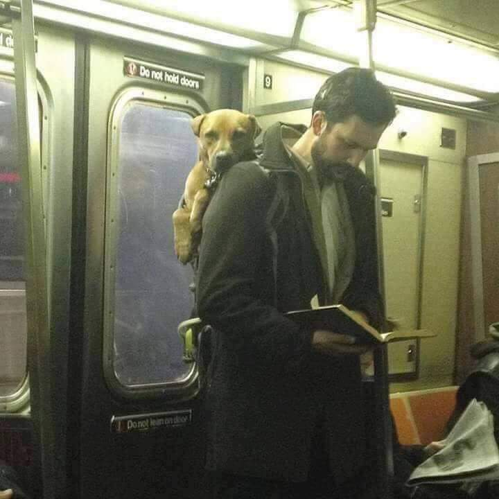 Yes! This kind of men still exist (15 Pics)