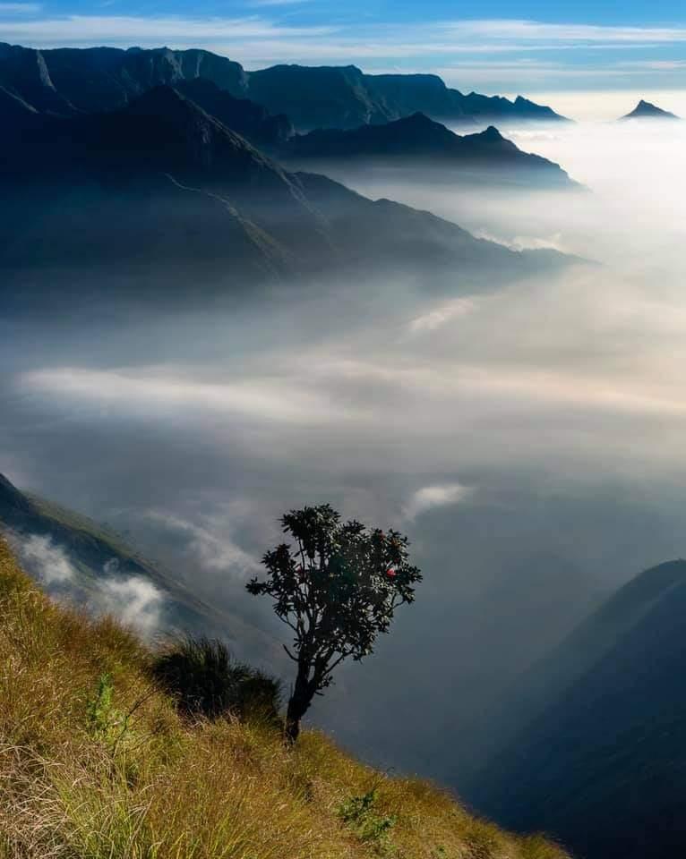 Most Beautiful  Munnar Through The Lens Of Rakesh Pulapa