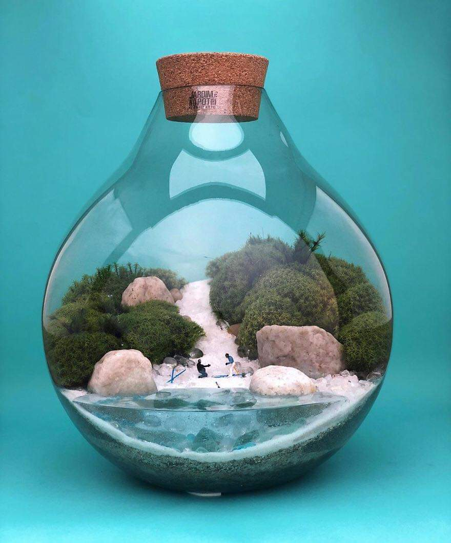 Micro Self-Sustainable Ecosystems In Glass Containers By Lina Cirilo & Laura Gonçales (30 Pics)