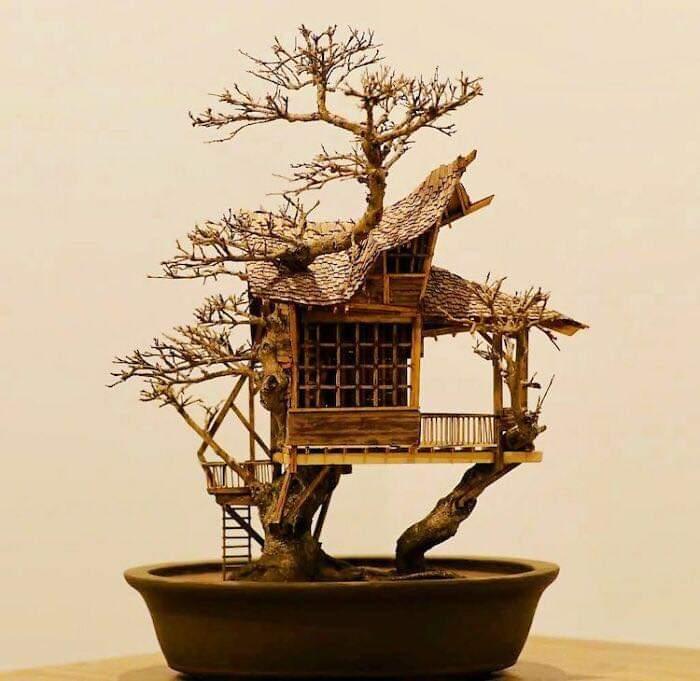 These incredible bonsai tree houses were created by the late artist Dave Creek who tragically died in a skydiving incident earlier this year!