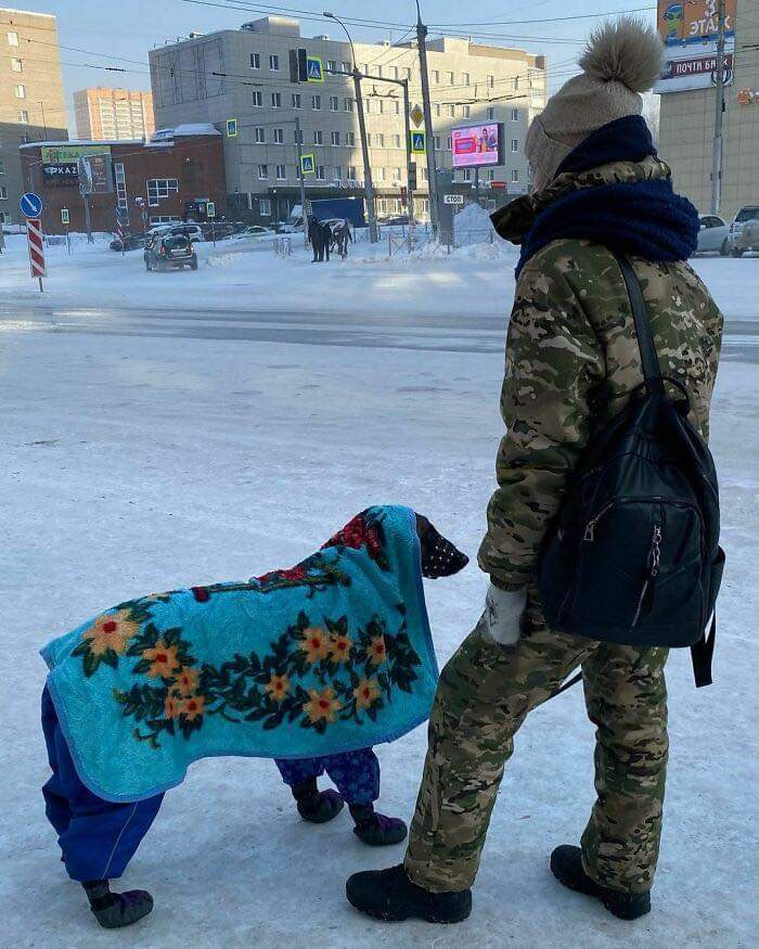 30 Pictures That Show How Unfathomably Cold It Is In Russia Right Now!