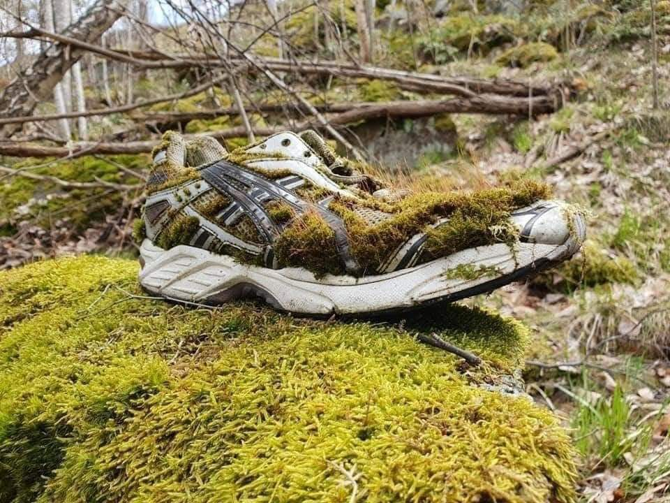 One day nature will take it back! (25 Pics)