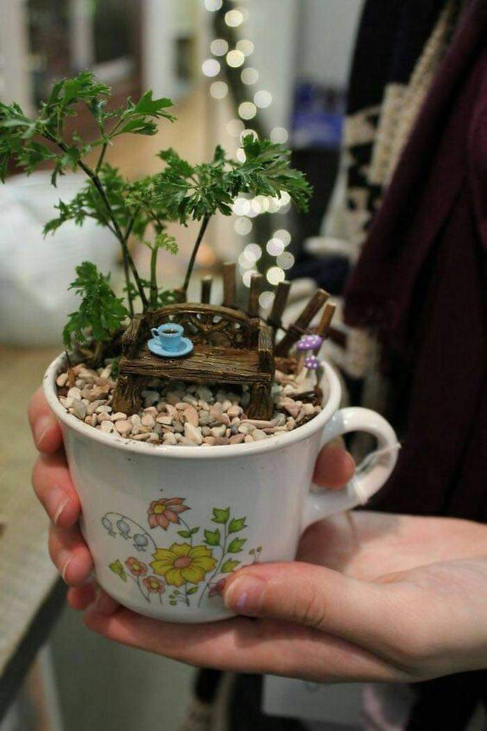 Teacup Gardens Are A Thing And Here Are Some Adorable Examples (23 Pics)