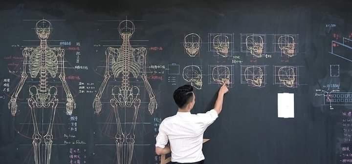 Anatomy in an artistic way By Chuan Bin Chung (9 Pics)