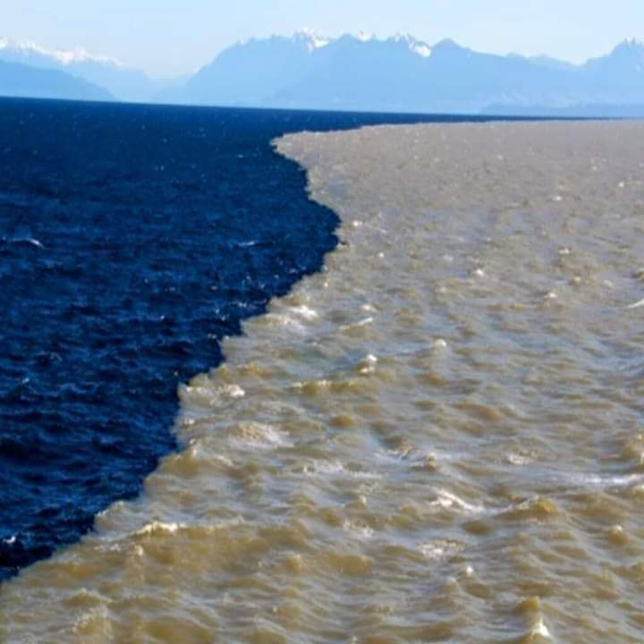 1Pic - Beautiful view of Gulf of Alaska where Two Oceans meet but never mix
