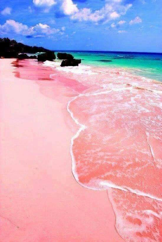 There are only seven beaches with sand of this color in the world. The one in Komodo is called Pantai Merah