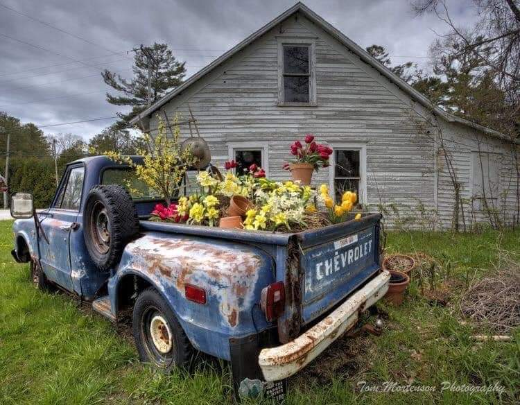 Abandoned vehicles sculpted into garden beds (15 Pics)