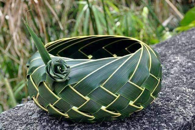 Made of Coconut leaves (15 Pics)