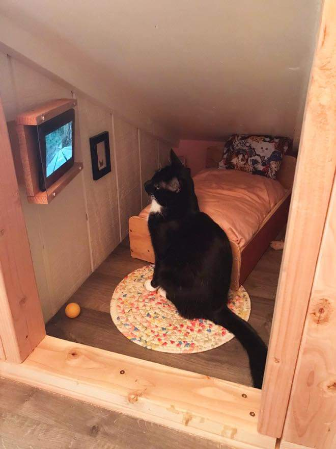 This Guy Built a Mini-Bedroom For His Cat By Bryan Davies (7 Pics)