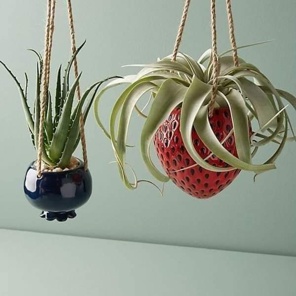 Beautiful decorative vases for plant lovers (23 Pics)