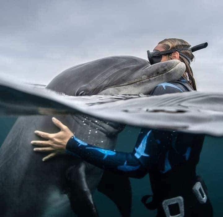 Photographers Captured Once In A Lifetime Moments Of The Animal World (15 Pics)