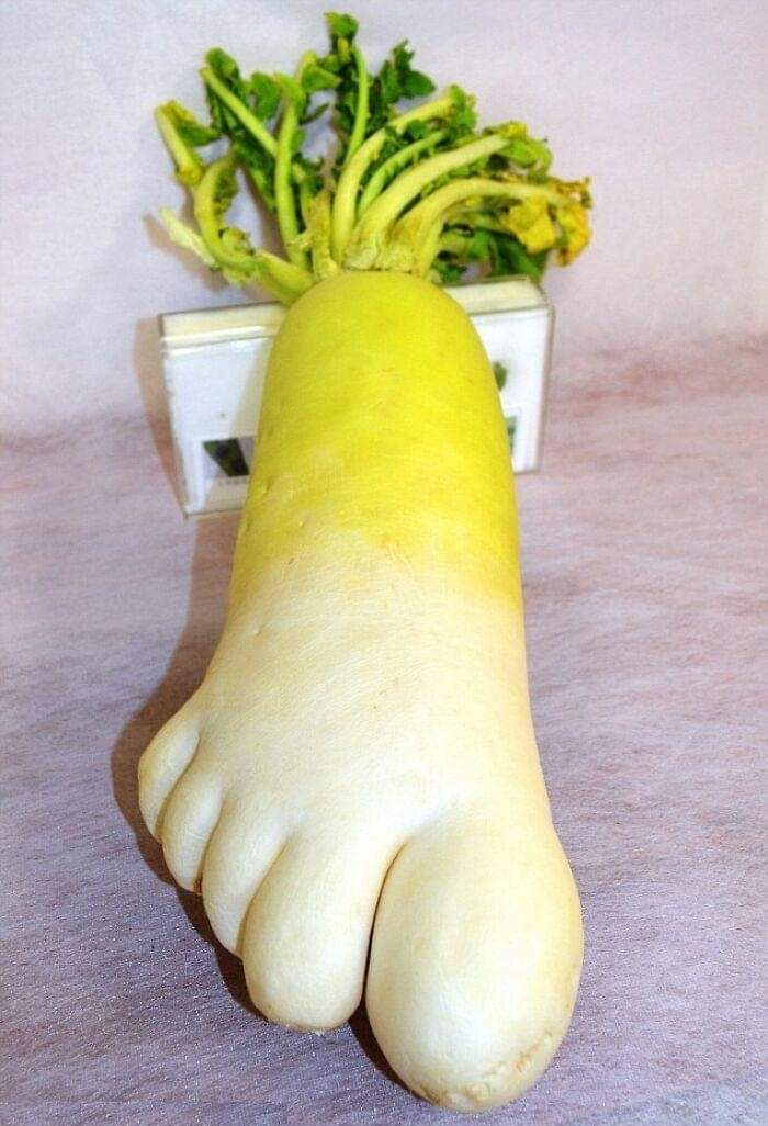 Fruits and Vegetables That Look like Something Else! (30 Pics)