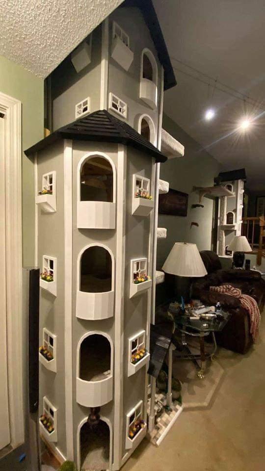 Beautiful Cat Homes (10 Pics)