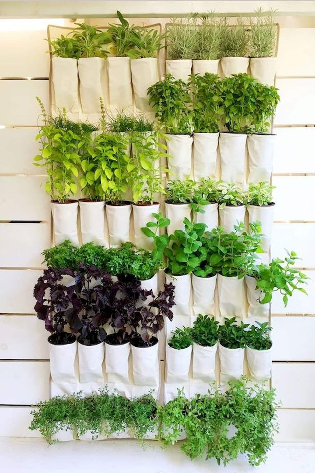 Ideas to Add Plants Inside Your Home (12 Pics)