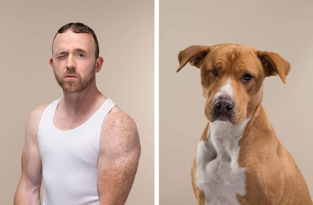 This Photographer Took Pictures of (Dogs- Cats) and Their Owners Side by Side, and They Look Amazingly Alike By Gerrard Gethings