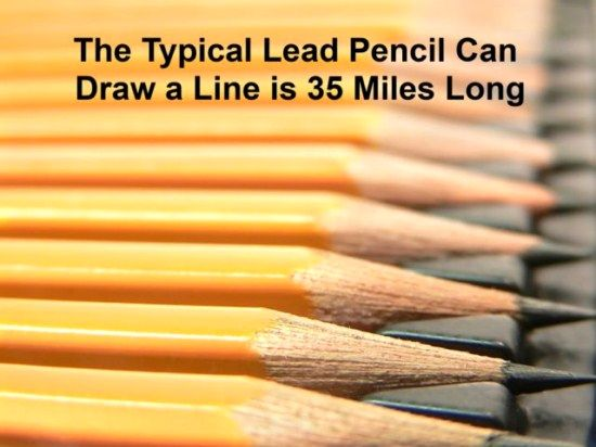 16 Amazing and Interesting Facts you won't believe