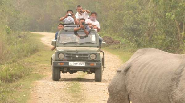 Assam Plans Heliport Near Kaziranga To Boost Tourism