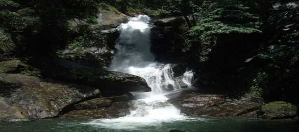 Top 5 Waterfalls Of Kerala | Weekend Getaways