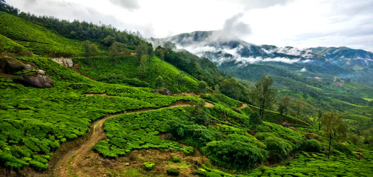 Most Beautiful Munnar in the Western Ghats Mountain Range of Kerala