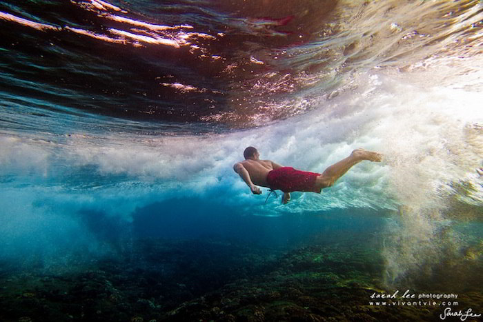 Stunning Underwater Photography by Sarah Lee