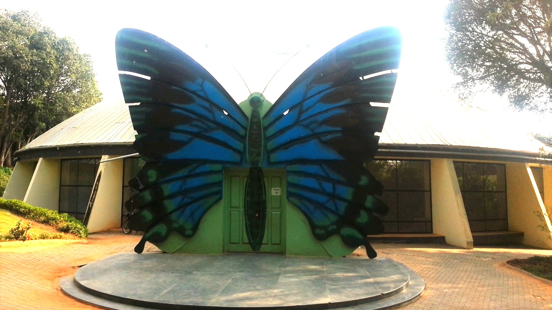 Butterfly Park at Bannerghatta Biological Park and Zoo | Bangalore | Karnataka