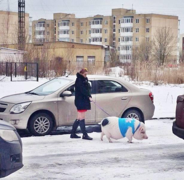 Funny Viral Photos - (18 Pics)