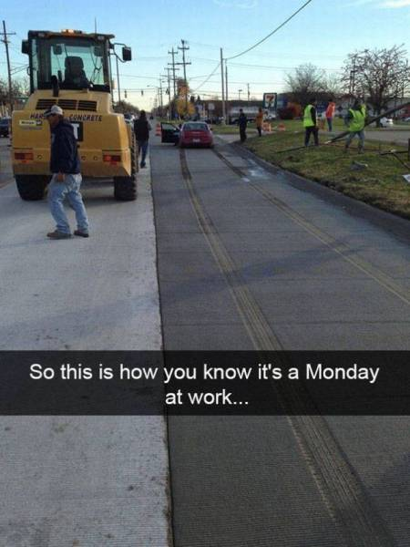 Daily Funny Photos - (15 Pics)