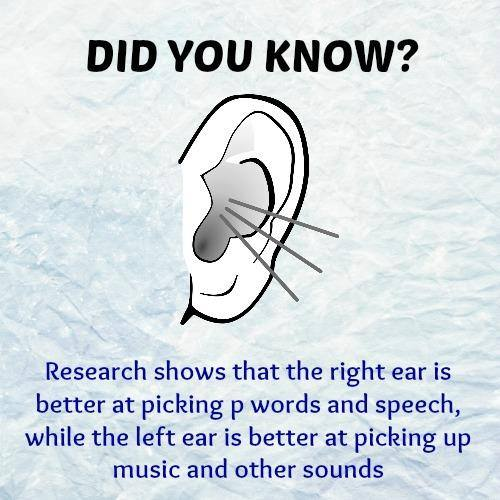 Did You Know ? (12 Pics)