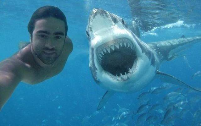 Fine Examples When A Picture Says More Than Just A Thousand Words (22 pics) (set-2)