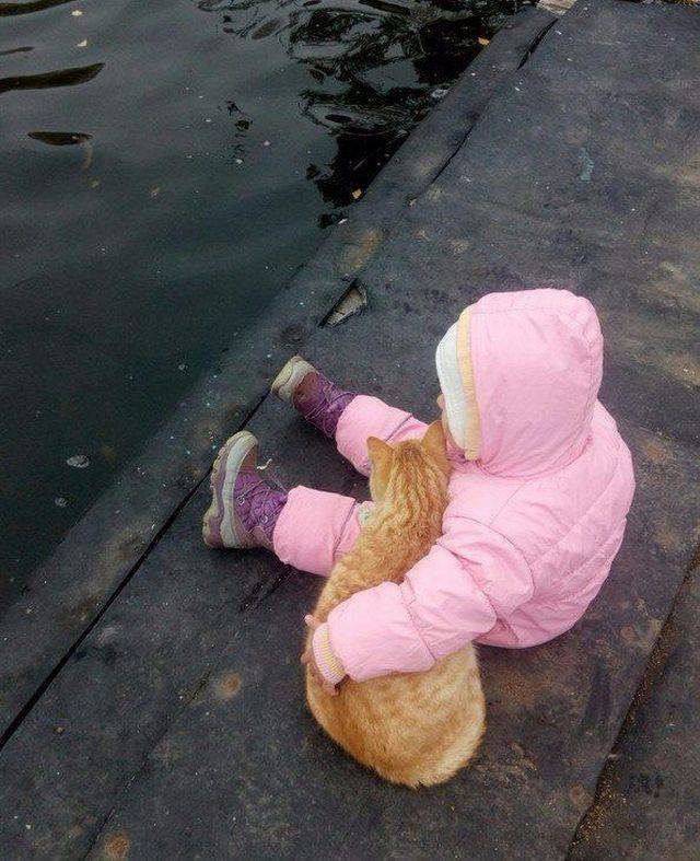 26 Most Amazing, Funny and Unique Pictures