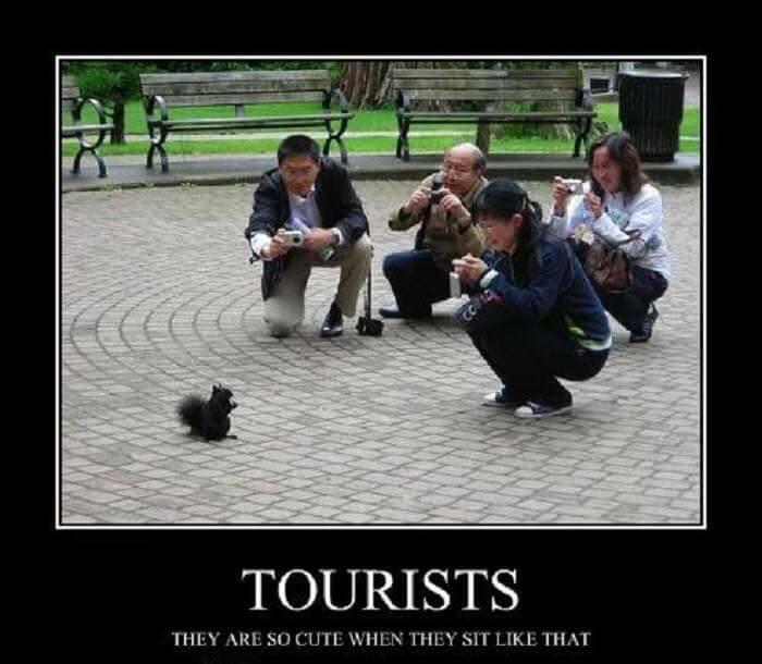 Worst Tourist Photos Ever (18 Pics)