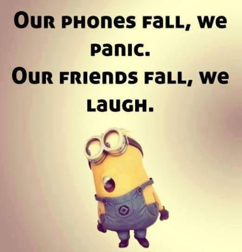 50 best funny quotes share