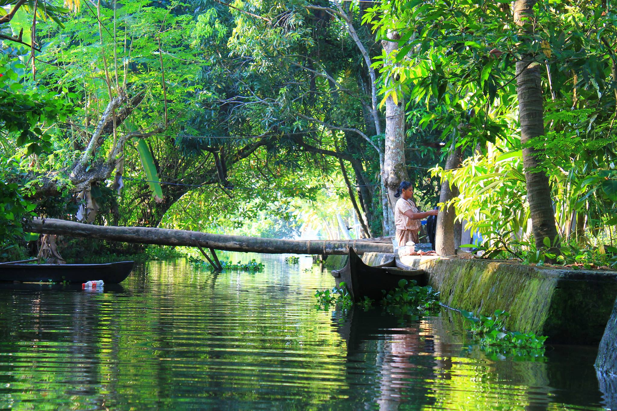 Travel To God's Own Country - Kerala