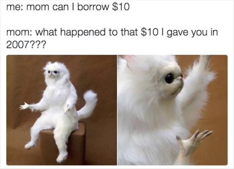Funny Picdump - EVERYDAY MOM Jokes - (15 Pics)