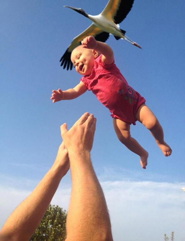 60 Perfectly timed photos - It's All In The Timing