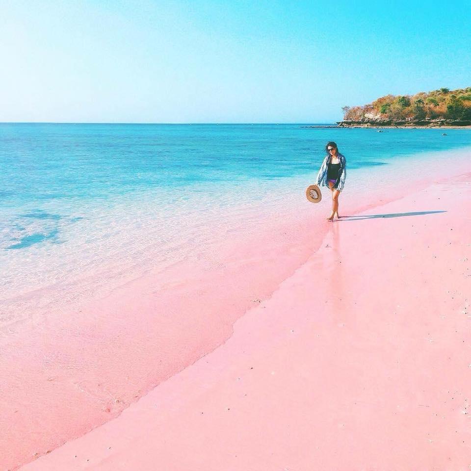 Stunning Pink Beach in Komodo, Indonesia (15 Pics)