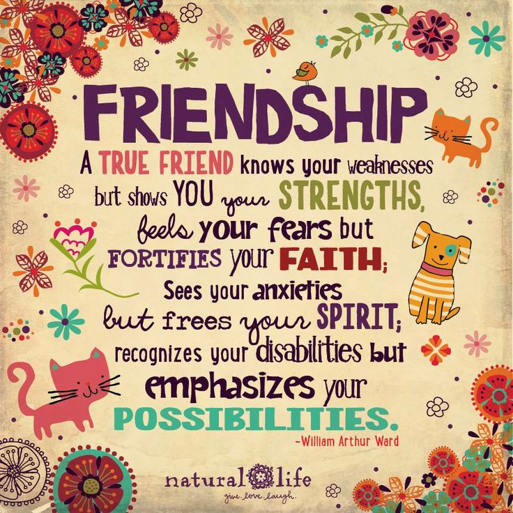 Friendship Quotes 36 Quotes