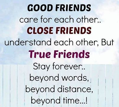 Images About Friendship Quotes Awesome Quotes  36 Quotes
