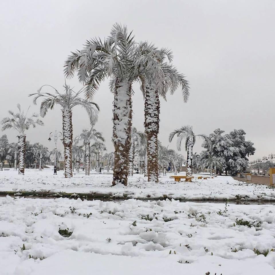 Snowfall in Saudi Arabia Desert