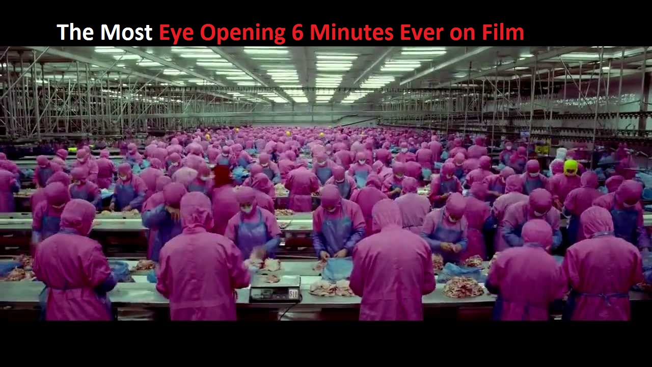 Without Saying a Word This 6 Minute Short Film Will Make You Speechless!