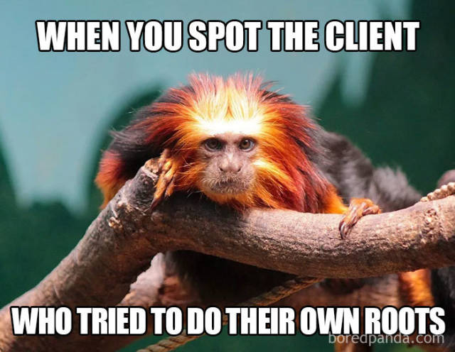 Hairstylist Funny Memes (27 pics)