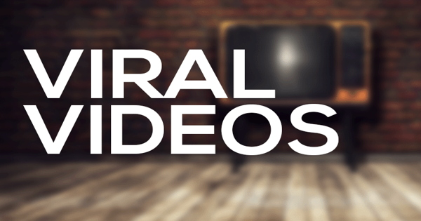 Viral Videos: The Latest, Funniest, Must Watch Videos From Around The Web