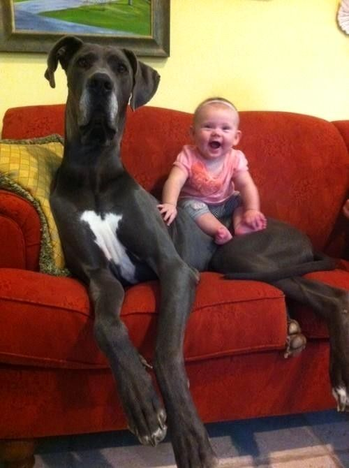 Morning Funny and Interesting Pic dump - (35 Pics)